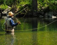 Fly Fishing Down The South Holston, Check!